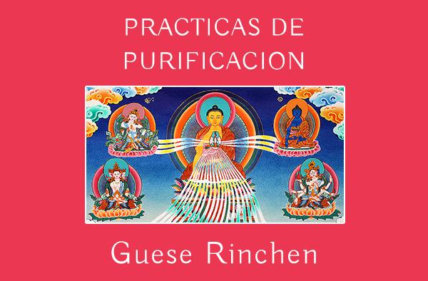 PRACTICAS DE PURIFICACION